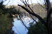 Garigal国立公園