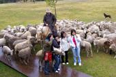 羊と記念撮影